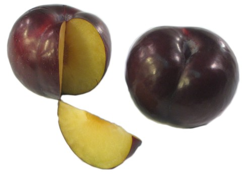 The Produce Guide - Plum Black Fresh