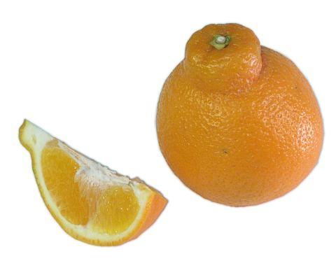 Minneolas | Wonderful Citrus