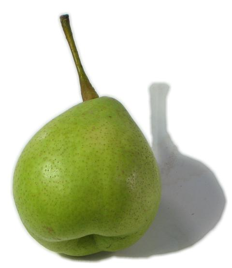 What is a Yali pear?